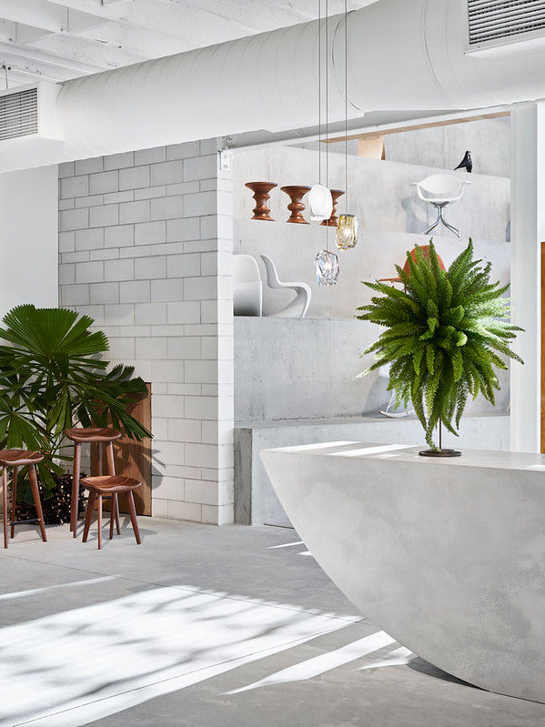 Project Living Edge Furniture Showroom