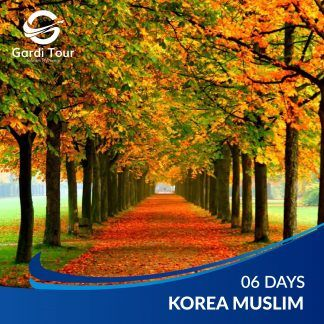 korea muslim