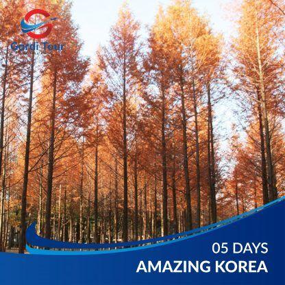 AMAZING KOREA