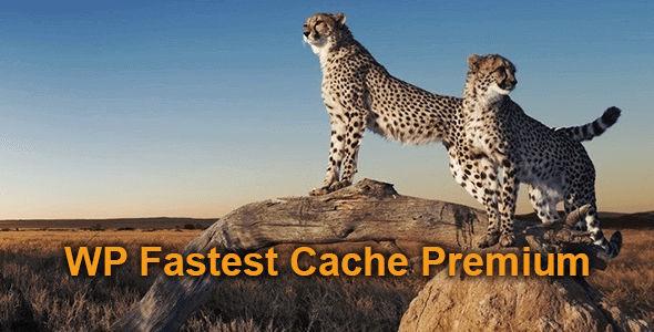 WP Fastest Cache Premium v1.6.0