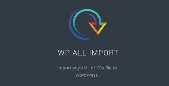 WP All Import Pro v4.6.6 b15