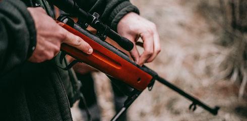 Freizeit-Luftgewehr: Die besten Einstiegsmodelle