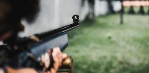 Luftgewehr kaufen