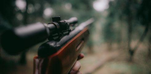 Langwaffen