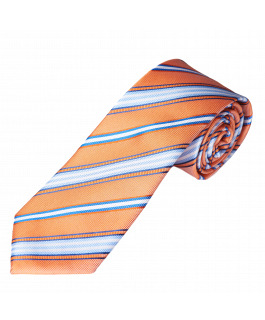 The Unbridled Silk Tie