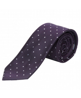 The Hudson Silk Tie