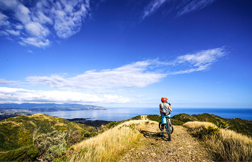 Eight Great New Zealand Bike Rides to Dominate