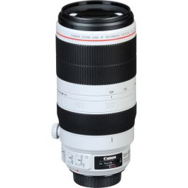 Image of Canon EF 100-400mm f4.5-5.6L IS II USM Telephoto Zoom Lens