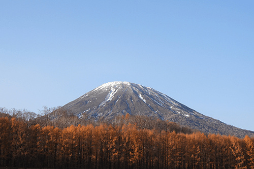 Snow-capped mountain beneath a clear blue sky with autumn trees in the foreground, photographed using the Nikon Coolpix P950