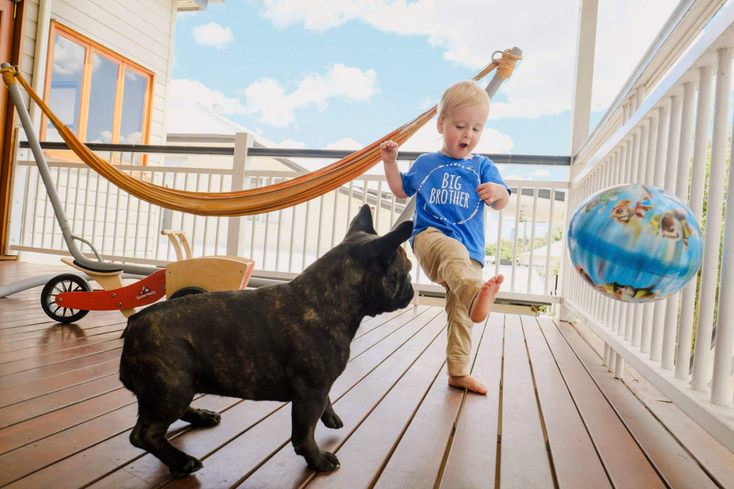 a boy and a dog playing with a ball