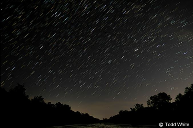 Blurred stars in a night sky above silhouettes of trees, photographed with the Panasonic LUMIX S5