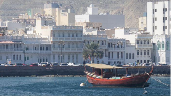 Boat on the coastline with white buildings on the background, photo taken using the Panasonic Lumix TZ220 digital camera