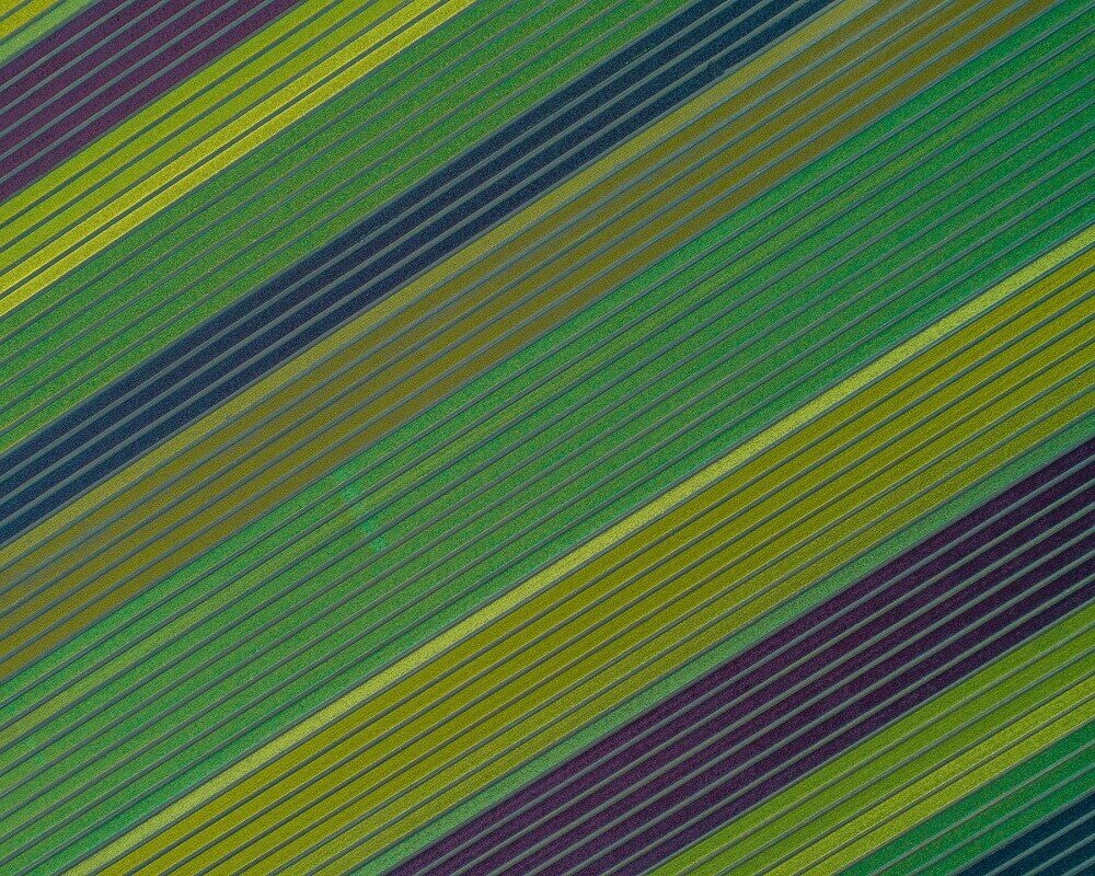 aerial photograph of a beautiful green field