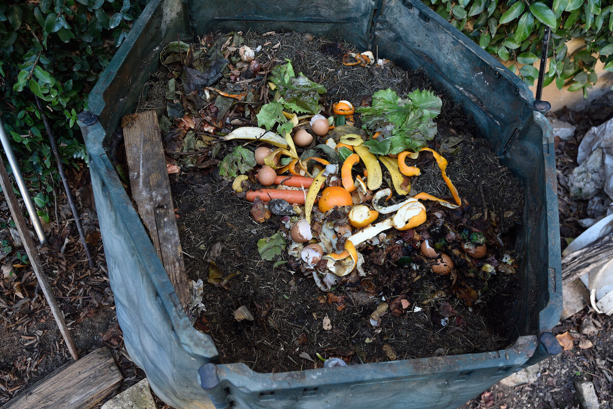 Home Composting 101: Compost Bins