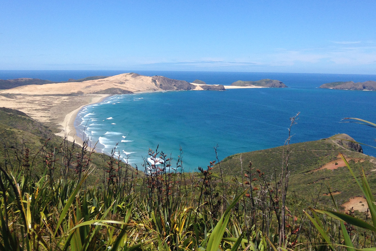 Our favourite New Zealand and Australian beaches
