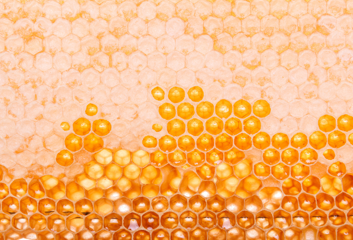 Pure gold: the benefits of Mānuka honey in skincare
