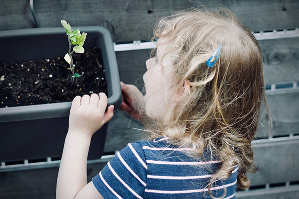Five tips to get kids into gardening and healthy eating
