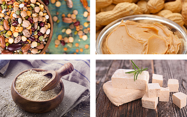 Protein sources for meatless days