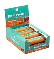 Greenback Plant Protein Bars - box of 12