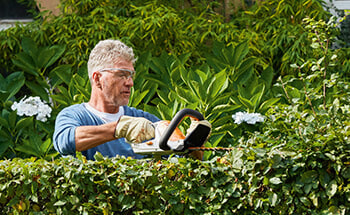 Battery Electric Tools for Small Gardens