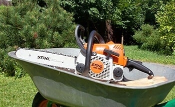 Home Chainsaws
