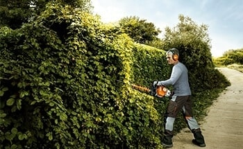 Professional Hedge Trimmers