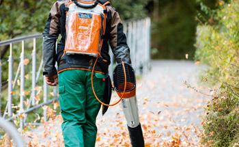 Professional & Backpack Leaf Blowers