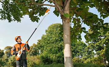 Cordless Battery Pole Pruner