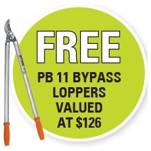 STIHL PB 11 BYPASS LOPPERS