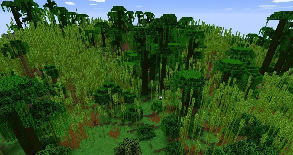 Huge Bamboo Jungle