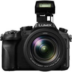 Panasonic DMC-FZ2500GA (20.1 MP, 4K) Point and Shoot Camera