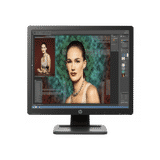 HP ProDisplay D2W67AA 19 inch (48 cm) Ultra HD LED Monitor