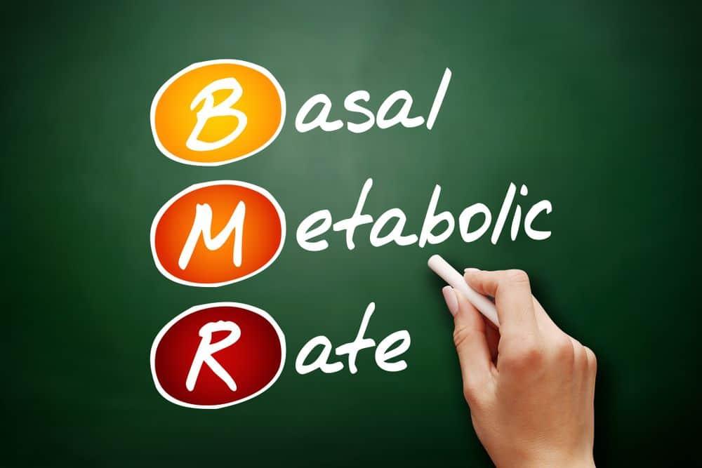 BMR - Basal Metabolic Rate acronym