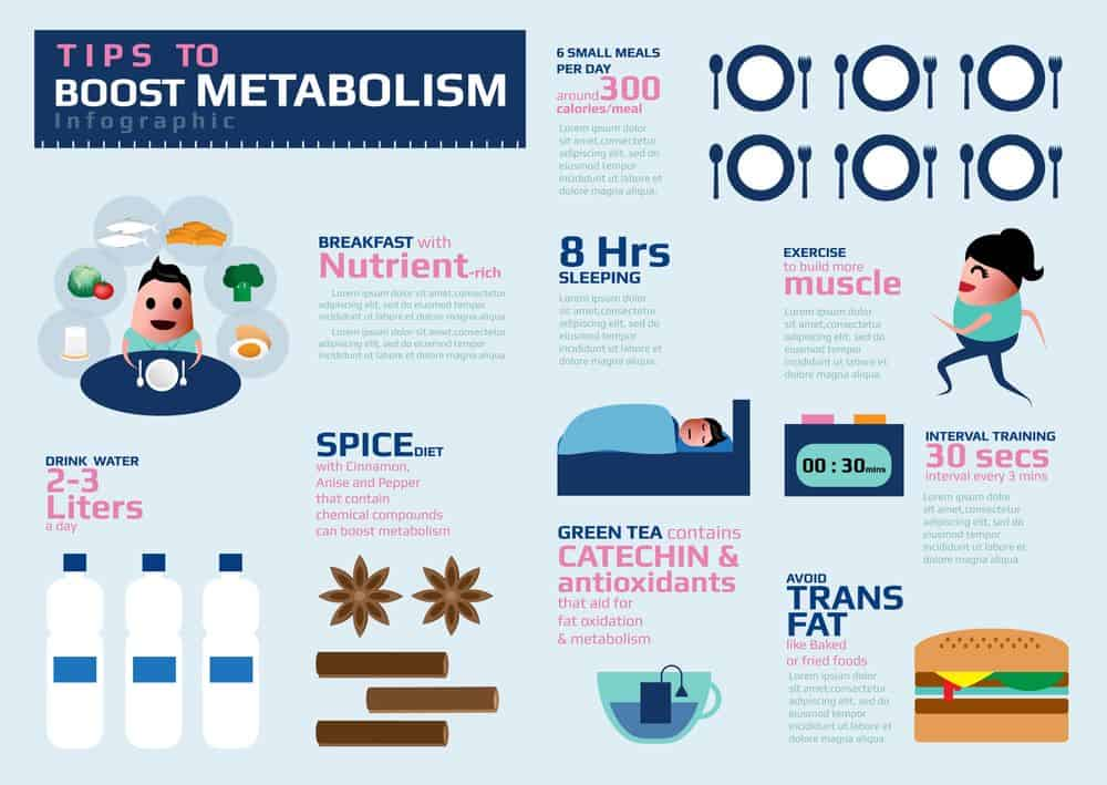 Infographic on tips how to boost metabolism - Natural ways to speed up your metabolism