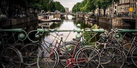 What to do in Amsterdam with kids