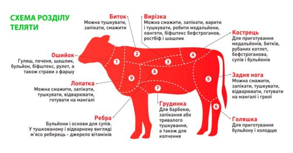 Meat-12