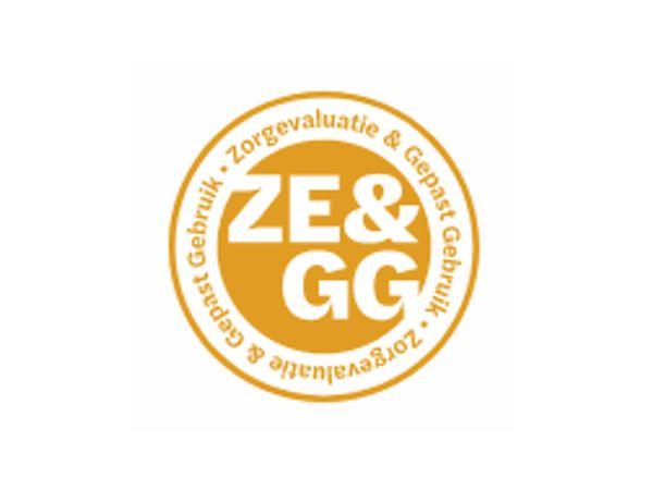 Bekijk hier het Jaarplan ZE&GG 2020/2021 met: