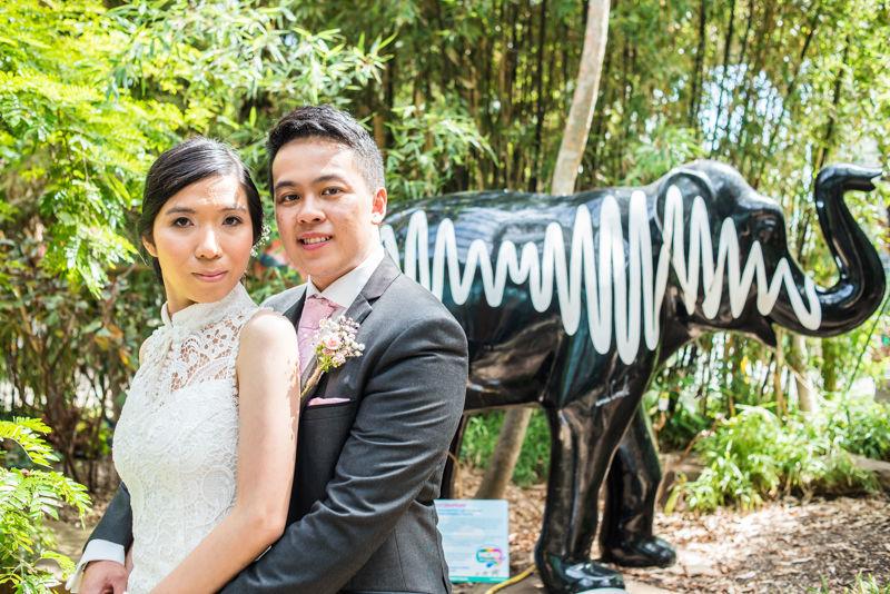Sheffield elephant for wedding couple Carmen & Chris