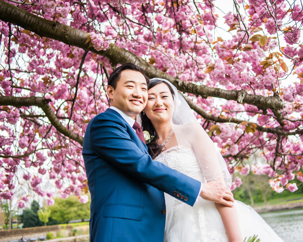 Blossom and bride and groom, Crookes Valley Park, Sheffield wedding photographer, Chinese wedding