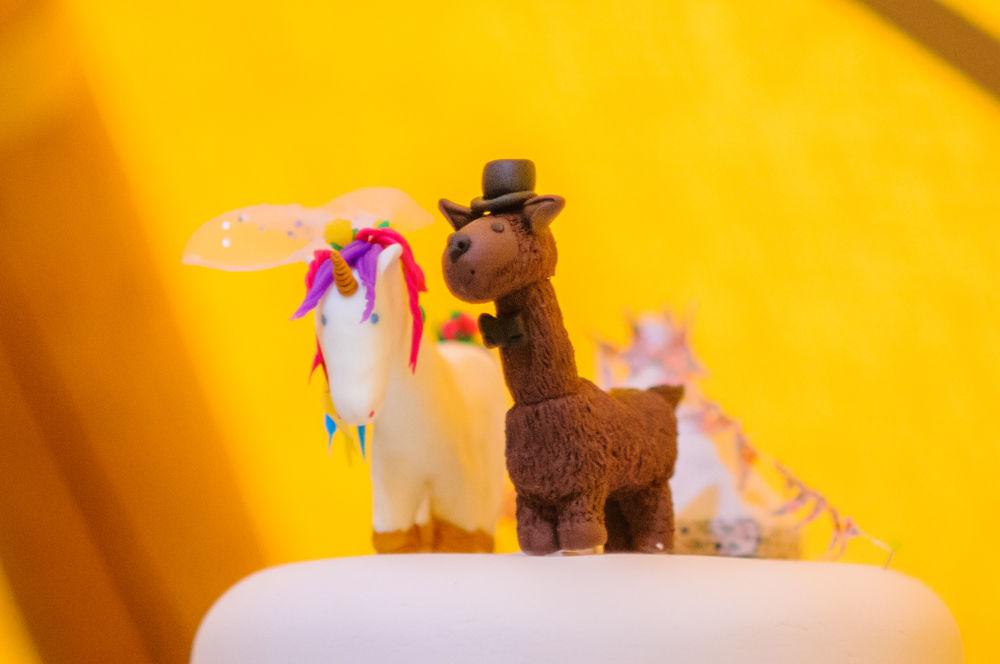 Unicorn and Llama cake topper, Sheffield wedding photographers, Smallshaw Farm Cottages