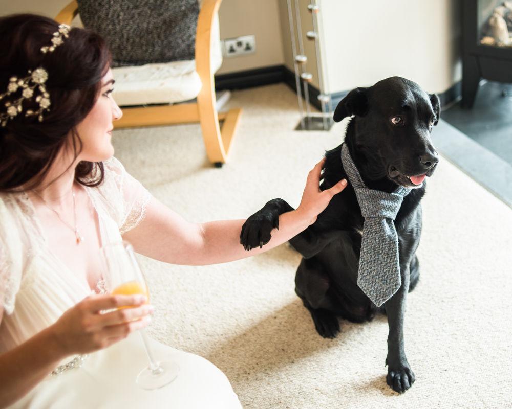 Dog bestman,  Wentworth Castle Garden wedding, Sheffield photographers