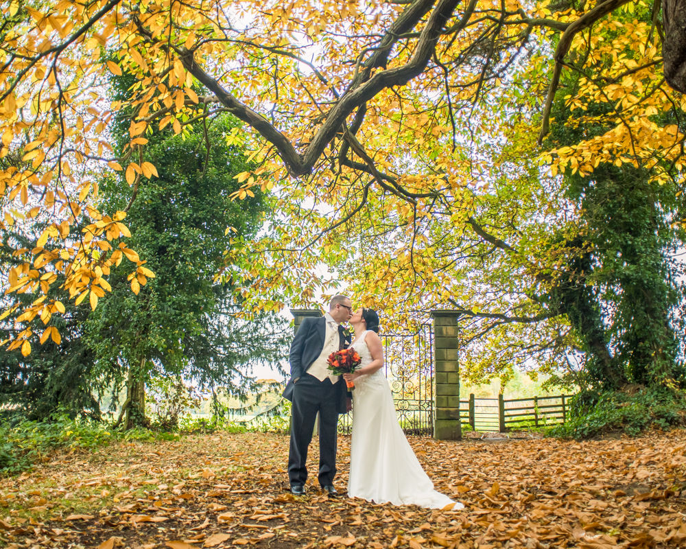 Autumn leaves in woods, Wortley Hall wedding, Sheffield wedding photographers