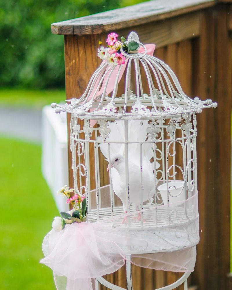 Dove, Maynard wedding photography Sheffield