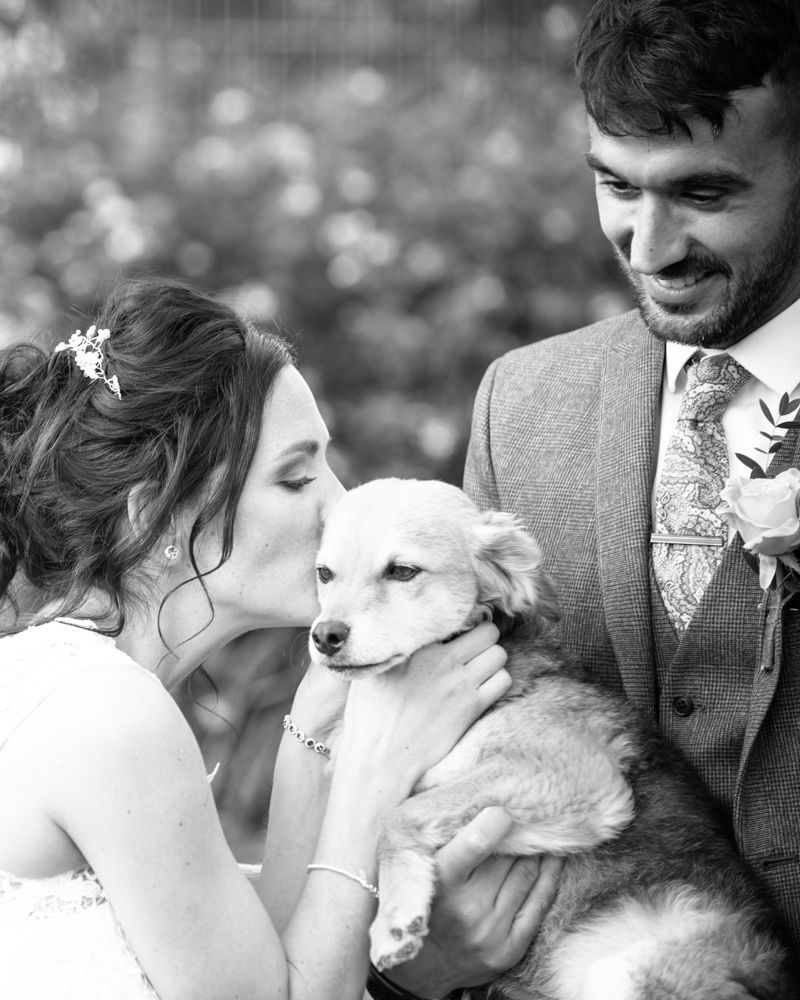 Bride kissing her dog, Barnsley wedding photographers