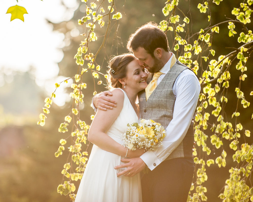 Ringwood Hall bride and groom in sunlight tree, cheap wedding photographers Sheffield