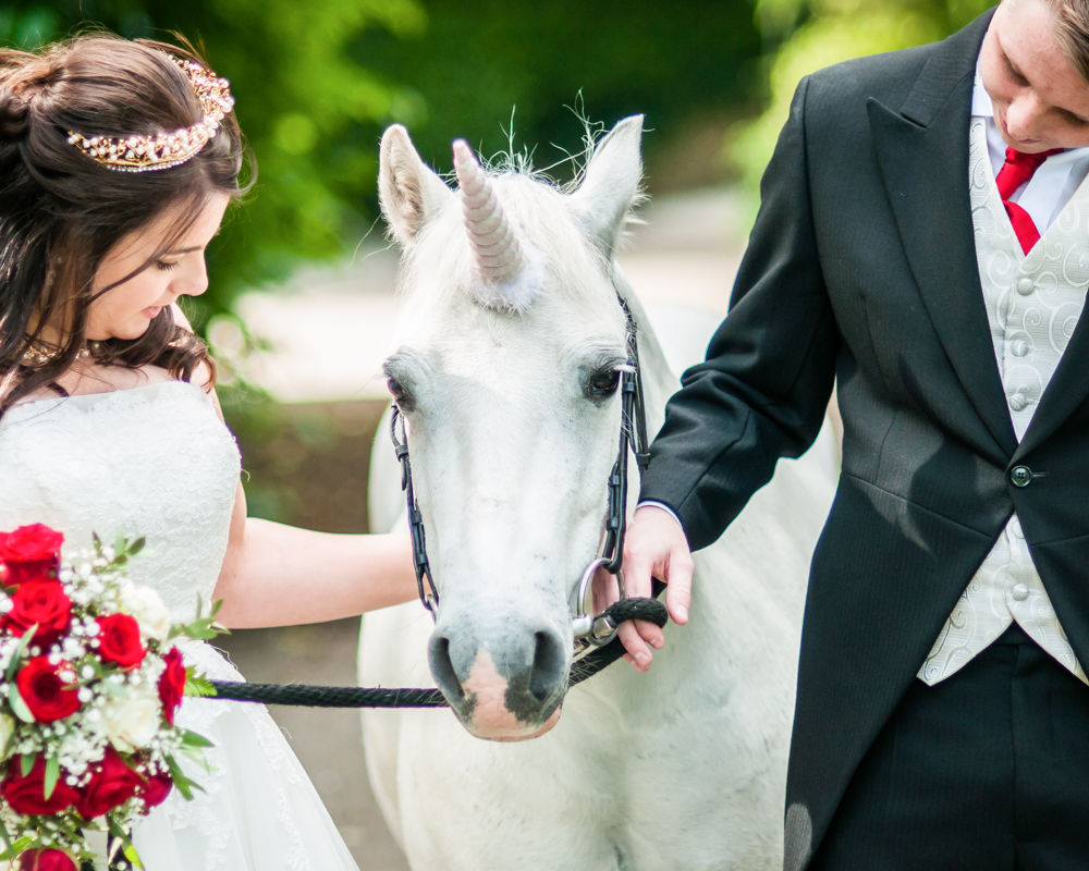 Wedding unicorn at Kenwood Hall Sheffield
