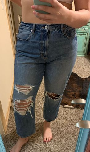 American Eagle Outfitters Mom Jeans