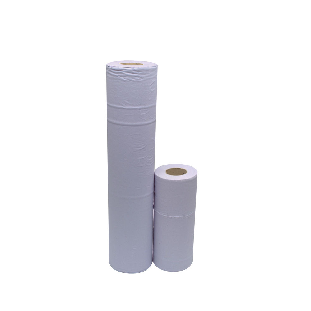 2Work Blue Hygiene Roll 2 Ply 10 Inch, Pack of 24 - HR2240