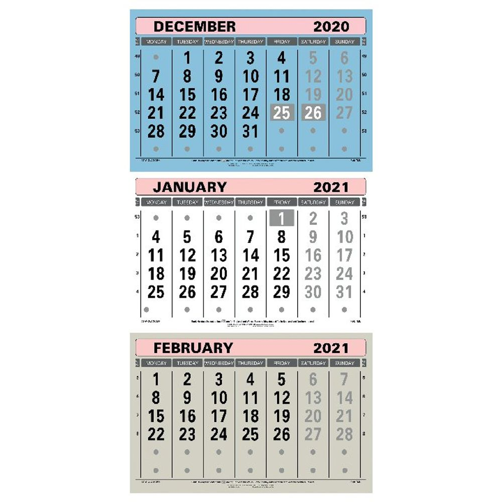 At-A-Glance Large Wall Calendar 2021 - TML21