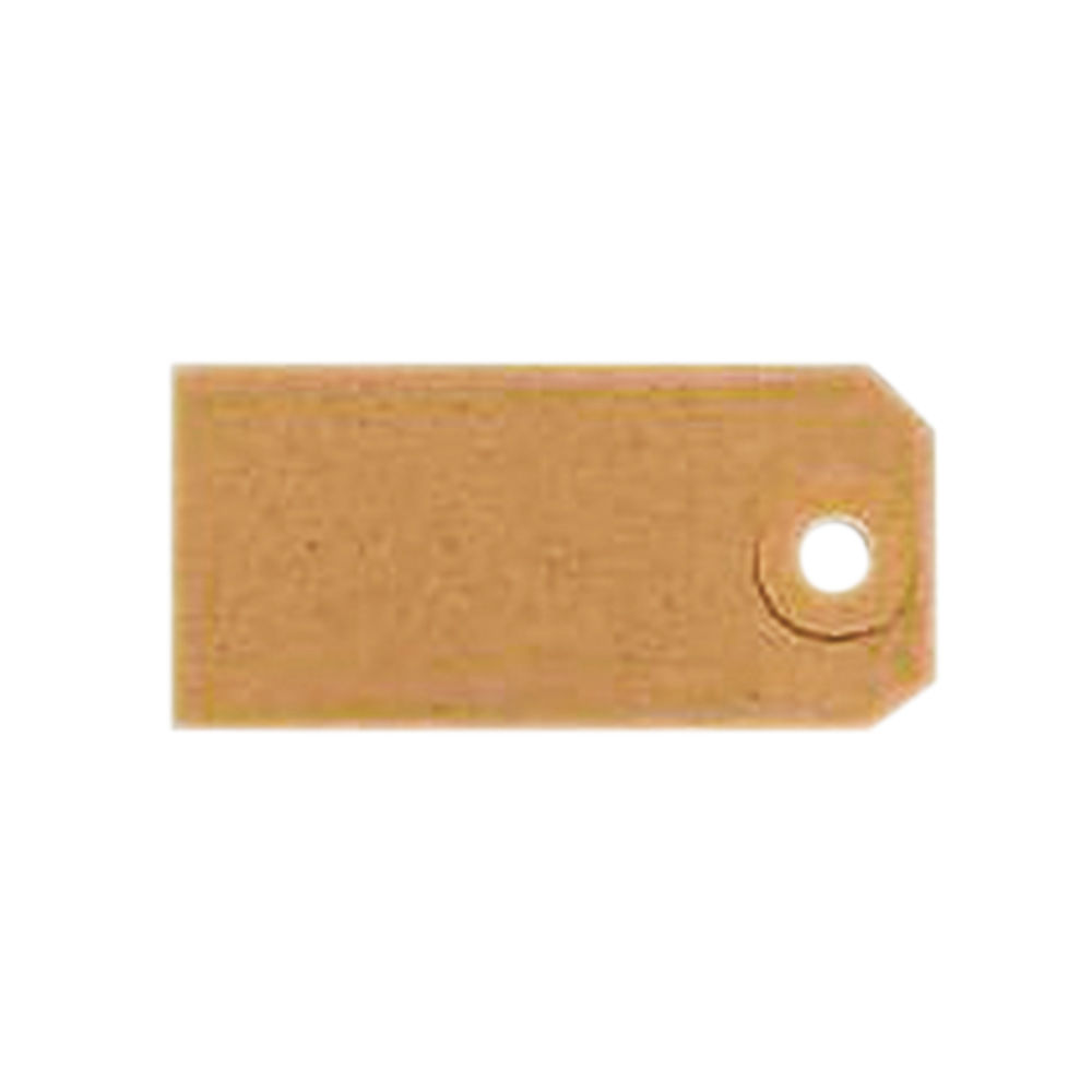 Fisher Clark Unstrung Tags 70x35mm in Buff
